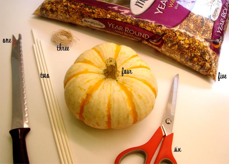 Pumpkinbirdfeedersupplies