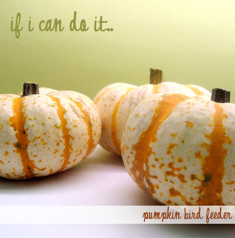 Pumpkinbirdfeeder